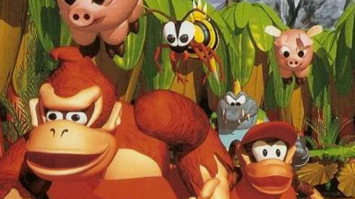 Re(?)Considered: Donkey Kong Land
